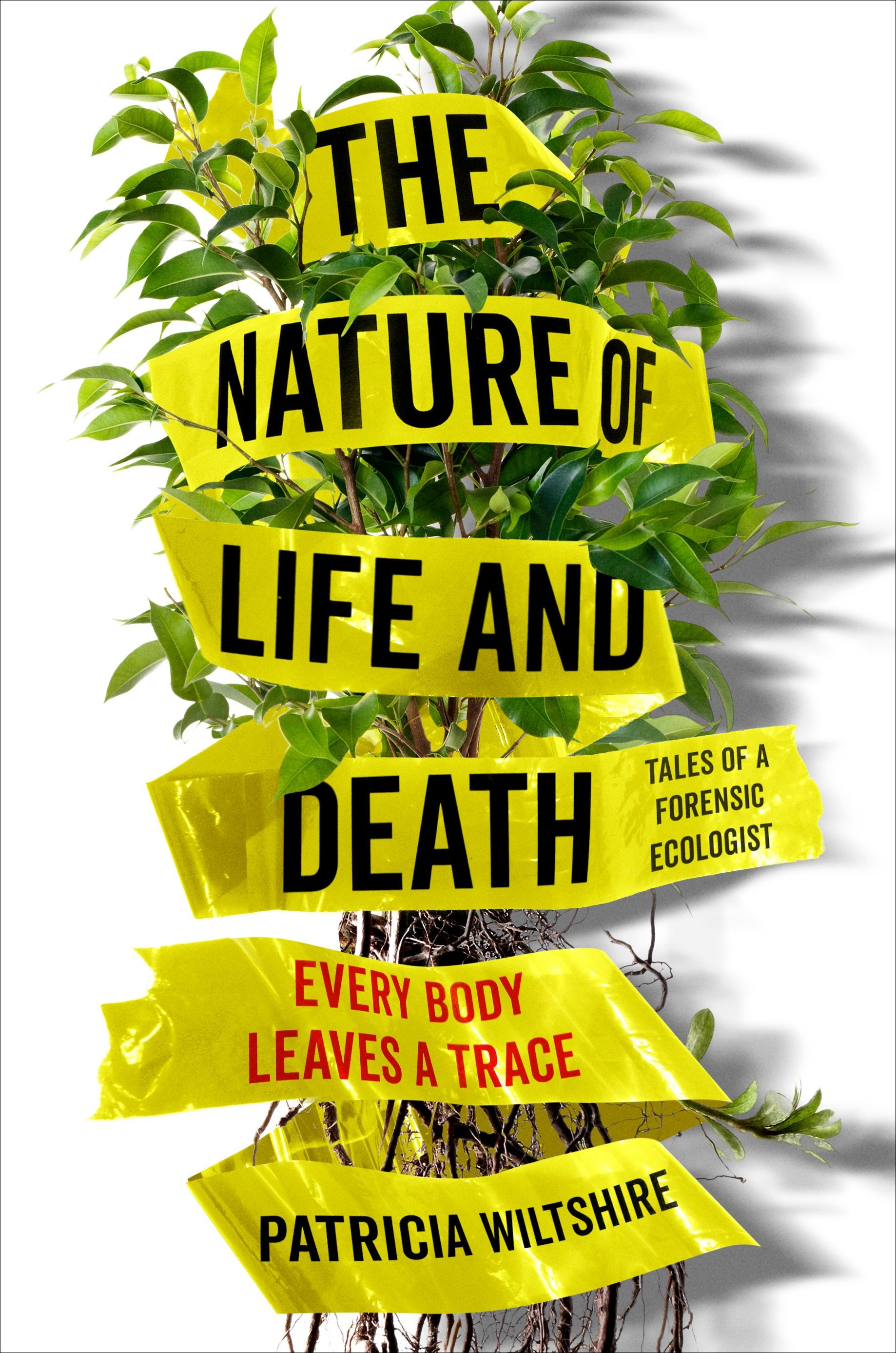 Nature of Life and Death